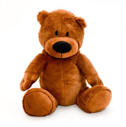 Obrázek Plyš do mikrovlnky - medvídek