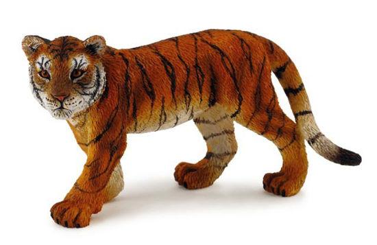 Obrázek z Tygr mládě stojící
