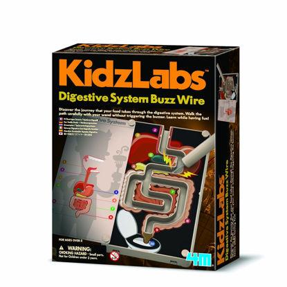 Obrázek KidzLabs Trávicí systém