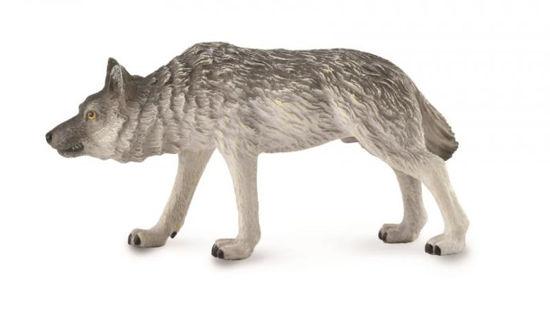 Obrázek z Vlk běžící