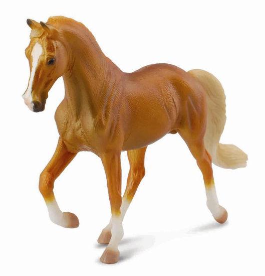 Obrázek z Tennessee Walking Horse hřebec zlaťák