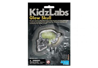 Obrázek KidzLabs Svítící lebka
