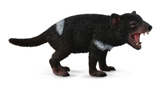 Obrázek z Tasmánský čert