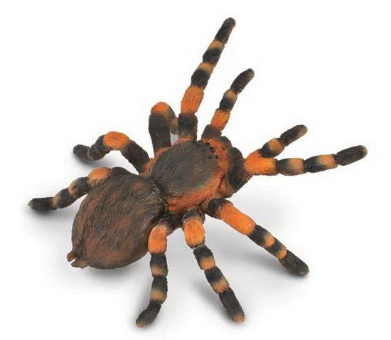Obrázek z Tarantule