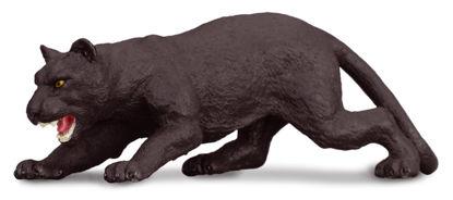Obrázek Černý panter