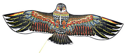 Obrázek Létající drak - orel