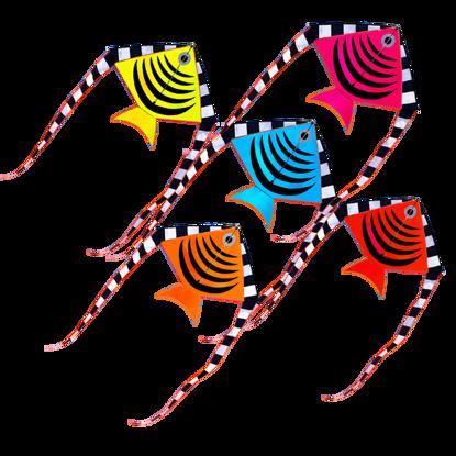 Obrázek Létající drak - rybička