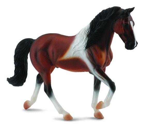 Obrázek z Tennessee Walking Horse hřebec hnědák