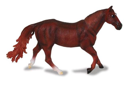 Obrázek z Quarter horse ryzák