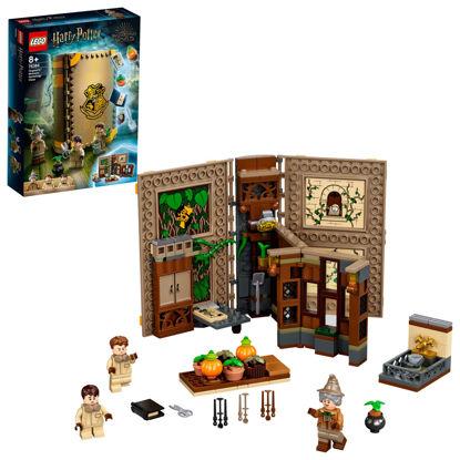 Obrázek LEGO Harry Potter 76384 Kouzelné momenty z Bradavic: Hodina bylinkářství
