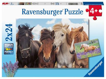 Obrázek Fotky koní puzzle 2x24 dílků