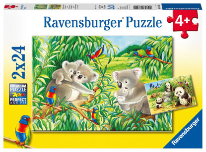 Obrázek Roztomilé koaly a pandy puzzle 2x24 dílků