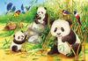 Obrázek z Roztomilé koaly a pandy puzzle 2x24 dílků