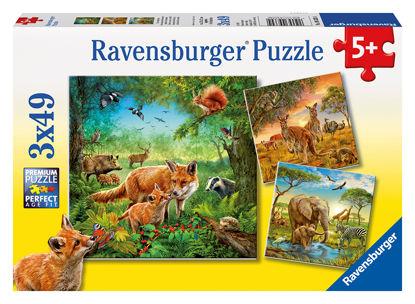 Obrázek Zvířata na zemi puzzle 3x49 dílků