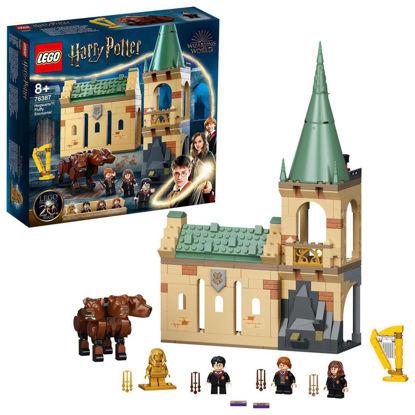 Obrázek LEGO Harry Potter 76387 Bradavice: setkání s Chloupkem